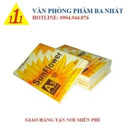 Bìa Thái Sunflower A3